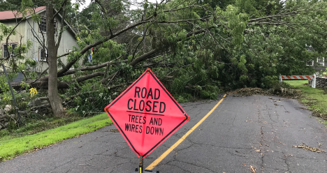 Road closed sign with trees and wires down in the background