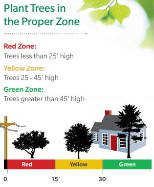 Graphic: Plant trees in the proper zone based on their height and distance from polls.