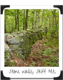 Stone Walls, Skiff Mountain